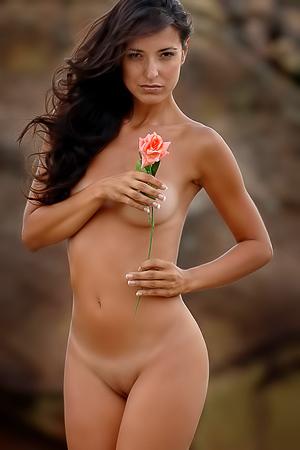 Kira In Rose